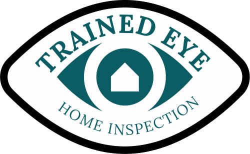 trained eye logo